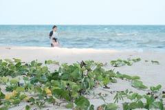 Onde del mare sulla spiaggia pulita con la luce del sole ed offuscare una donna con un bambino che cammina lungo la spiaggia immagini stock