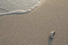 Onde della spiaggia che emettono luce alla mattina Fotografia Stock Libera da Diritti
