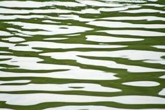 Onde di acqua nel lago fotografia stock libera da diritti