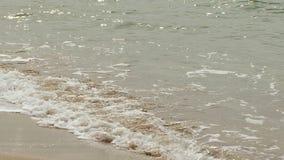 Onde di calma della spiaggia di lavaggio di Mar Nero archivi video