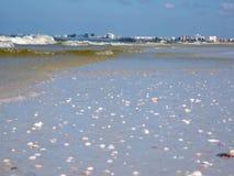 Onde di marea rossa che lavano su su una spiaggia di Florida archivi video