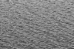 Onde di oceano in bianco e nero Fotografie Stock