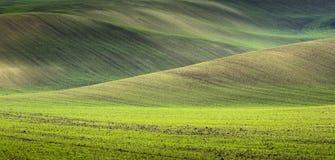 Onde di oceano in colline verdi Fotografia Stock