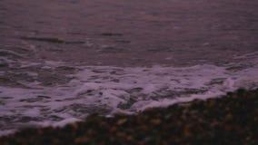 Onde di oceano delicate che colpiscono il litorale di Pebble Beach, vista sul mare tranquilla dell'acqua di mare video d archivio