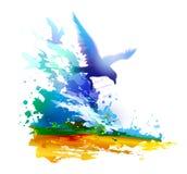 Onde di oceano ed uccelli di volo gabbiani Fotografie Stock Libere da Diritti