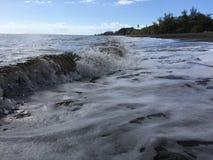 Onde di oceano Pacifico con sporcizia dal fiume di Waimea dal canyon di Waimea alla spiaggia di Waimea sull'isola di Kauai in Haw fotografia stock libera da diritti