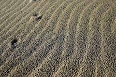 Onde di sabbia Fotografia Stock
