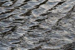 Onde nella superficie dell'acqua Fotografia Stock