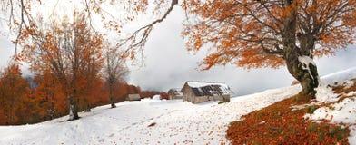 Onde o outono encontra o inverno Imagens de Stock