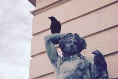 Onde os corvos vão estar sozinhos Imagens de Stock