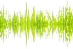 Onde sonore 001 Immagini Stock