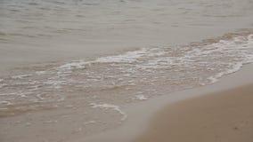 Onde sul fiume nella fine del tempo ventoso su archivi video
