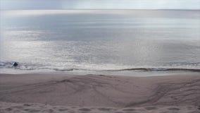 Onde sulla sabbia video d archivio