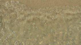 Onde sulla spiaggia video d archivio