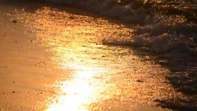 Onde sulla spiaggia al tramonto, primo piano di alba archivi video