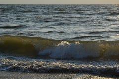 Onde sulla spiaggia di sabbia Immagine Stock Libera da Diritti