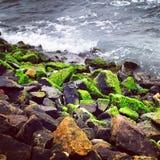 Onde sulle rocce Fotografia Stock