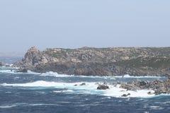 Onde sulle rocce Immagini Stock