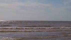 Onde vicino al mare archivi video