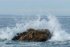 Ondeggi la rottura sulla roccia appena oltre la spiaggia, il Laguna Beach, la California Fotografie Stock