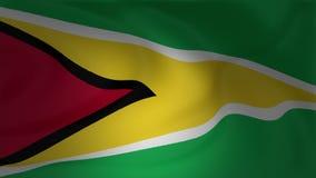 Ondeggiamento del primo piano della bandiera della Guyana video d archivio