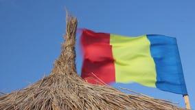 Ondeggiamento rumeno e canna della bandiera stock footage