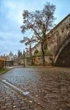 Onder Charles Bridge in Praag stock foto's