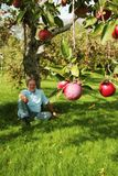 Onder de appelboom Stock Foto