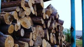 Onder de luifel is er brandhout stock video