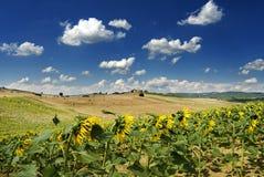 Onder de Toscaanse hemel Royalty-vrije Stock Foto's