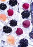 Onder ijsblokjes Stock Fotografie