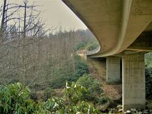 Onder Linn Cove Viaduct stock foto's