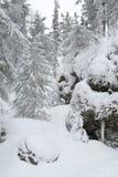 Onder sneeuw Royalty-vrije Stock Foto