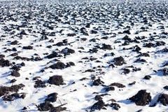 Onder Sneeuw Stock Afbeelding