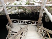 Onderaan in Cenote royalty-vrije stock afbeeldingen