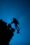 Onderaan mening van een onderwaterfotograaf Stock Fotografie