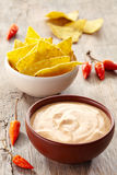 Onderdompeling en nachos royalty-vrije stock foto