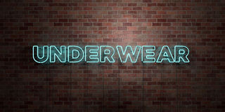 ONDERGOED - fluorescent T.L.-buisteken op metselwerk - vooraanzicht - 3D teruggegeven royalty vrij voorraadbeeld stock afbeeldingen