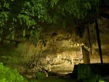 Ondergrondse cenote in Mexico Stock Afbeelding