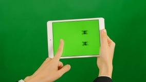 Onderneemster die een lege groene het schermtablet op groene achtergrond gebruiken stock video