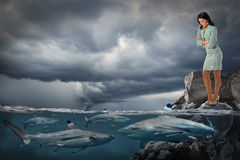Onderneemster Looking bij Haaien het Zwemmen Royalty-vrije Stock Foto