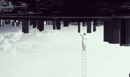 Onderneemster op ladder Royalty-vrije Stock Foto's
