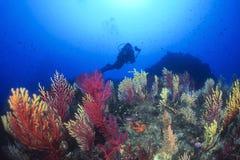 Onderwater royalty-vrije stock fotografie