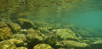 Onderwater achtergrond Stock Fotografie