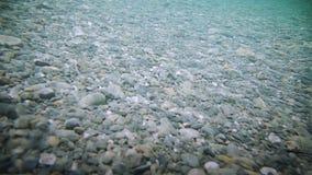Onderwater Duidelijke Rivierbodem stock footage