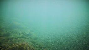 Onderwater Duidelijke Rivierbodem stock videobeelden