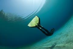 Onderwater duiker Royalty-vrije Stock Foto's
