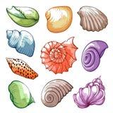 Onderwater en overzeese tropische shells, heldere waterverfreeks royalty-vrije illustratie