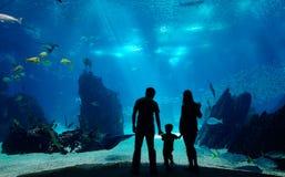Onderwater familie stock afbeelding