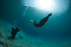 Onderwater fotograaf Stock Foto's